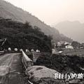 屏東好茶村6809.jpg