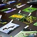 陽明山攝影比賽18.jpg