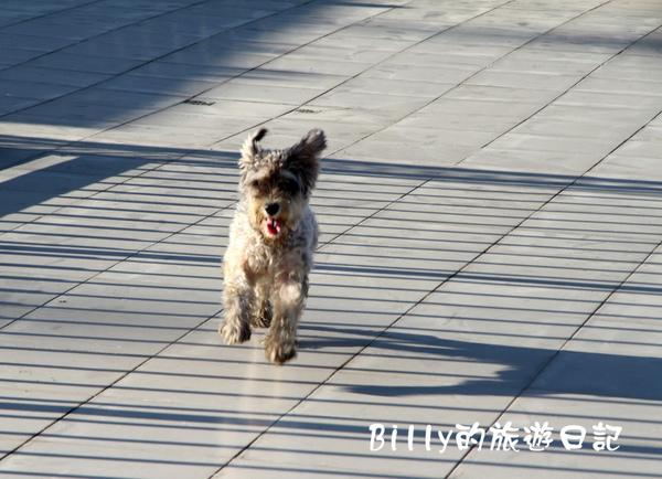 高雄茂林多納黑米祭051.JPG