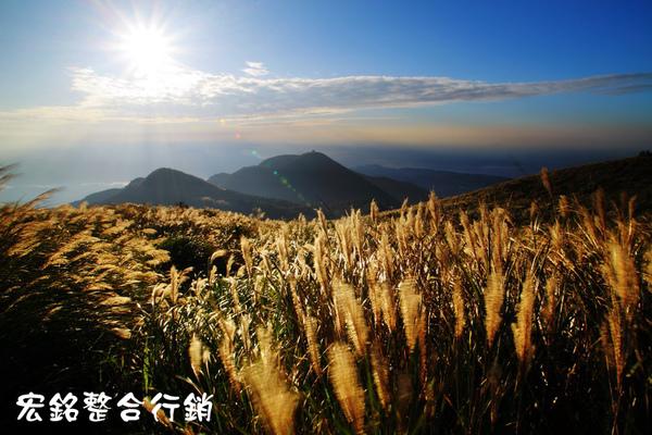 佳作-柯介安-光耀金芒(NO.35)ok_p1.jpg