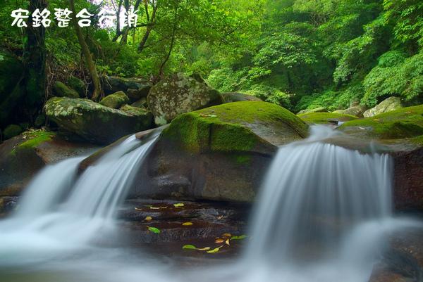 佳作-蔡俊生-雙溪綠世界(NO.282).jpg