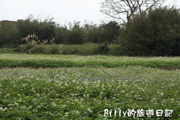 楊梅高榮社區33.JPG