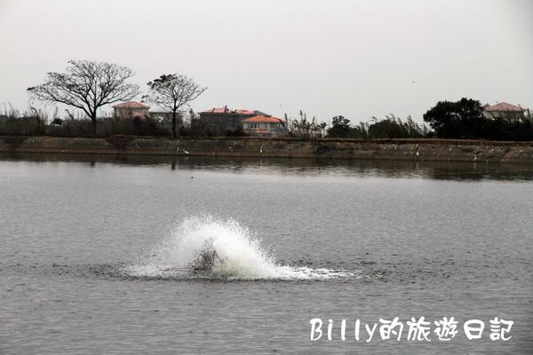 楊梅高榮社區05.JPG