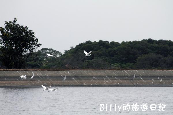 楊梅高榮社區08.JPG
