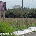 楊梅高榮社區16.JPG