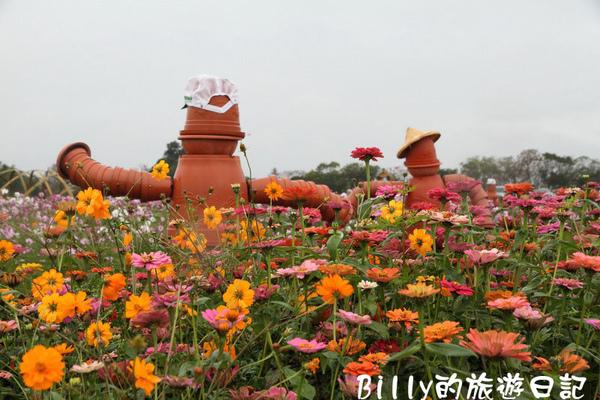 花東花海節29.JPG