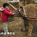 池上鄉創意稻草人06.JPG