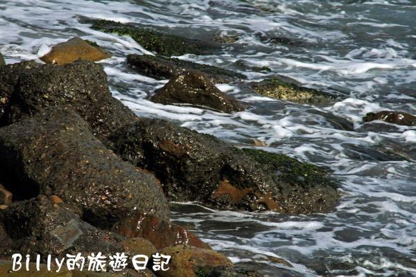 瑞濱到陰陽海03.JPG