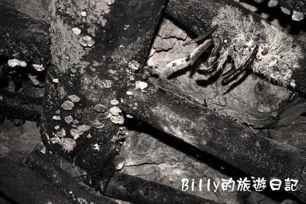 瑞芳金瓜石黃金博物館08.jpg