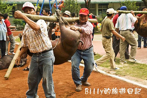 2009高雄那瑪夏春之頌系列活動-布農射耳祭6.jpg