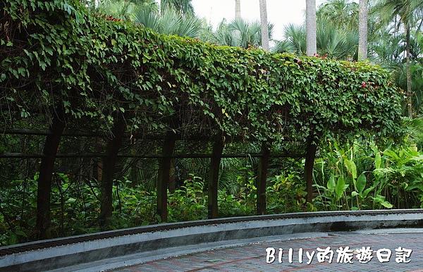 台北市植物園03.jpg