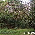 基隆紅淡山045.jpg