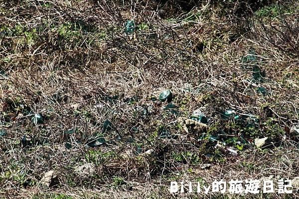 馬祖東莒-神秘小海灣&60據點16.JPG