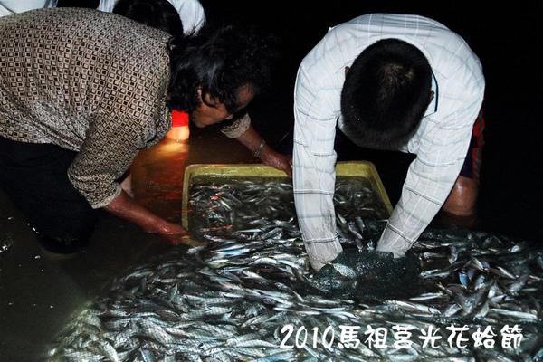 2010馬祖莒光花蛤節活動照片034.JPG