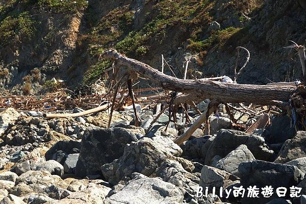 東莒犀牛嶼059.jpg