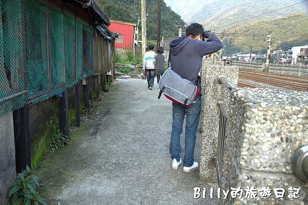 侯硐貓村057.jpg
