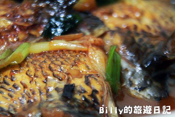 台灣潮鯛(魚下巴)021.JPG