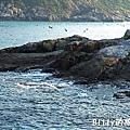 馬祖北竿大坵島062.jpg