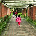 台北市植物園21.jpg