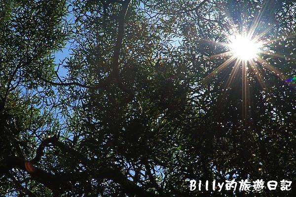 馬祖東莒-魚路古道123.jpg