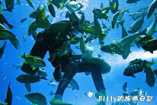 國立海洋生物博物館020.jpg
