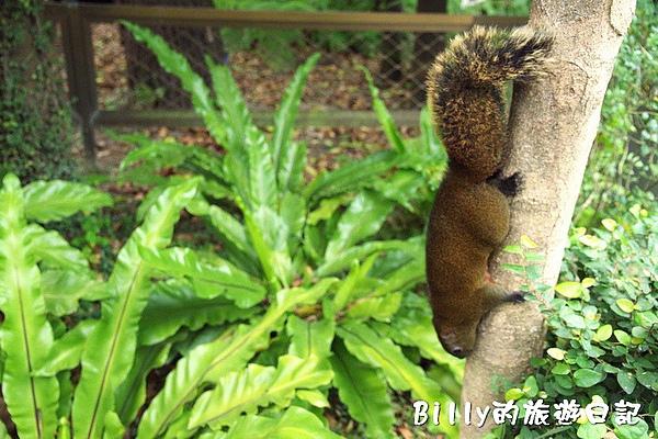 台北市植物園18.jpg