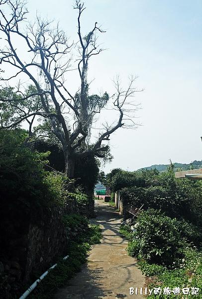 馬祖西莒田沃村062.JPG