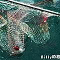 馬祖東莒船釣鱸魚021.JPG