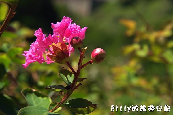 馬祖東莒-魚路古道064.jpg
