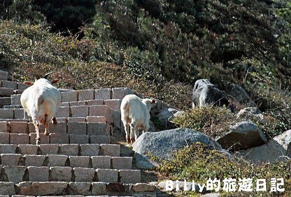 馬祖東莒-神秘小海灣&60據點27.JPG