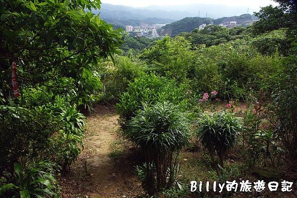 獅球嶺西砲台004.jpg