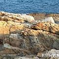 馬祖北竿大坵島057.jpg
