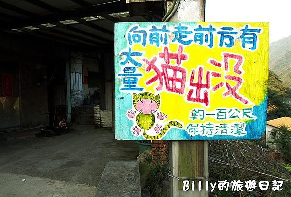 侯硐貓村044.jpg