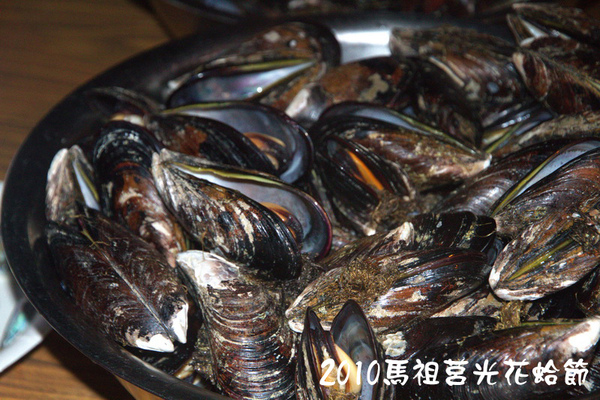 2010馬祖莒光花蛤節活動照片087.jpg