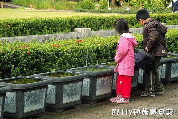 台北市植物園22.jpg