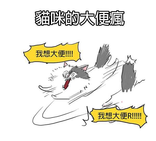 fb貓咪大便瘋1.jpg