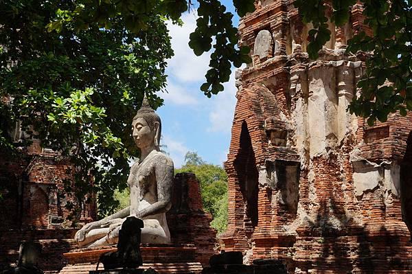 「樹幹盤佛頭」前的佛像與佛塔
