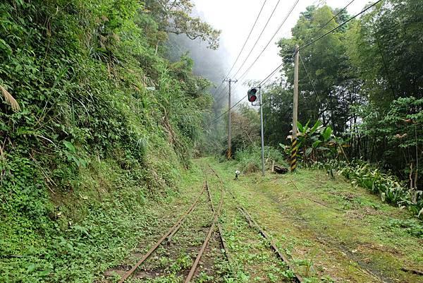 十字路車站往多林方向