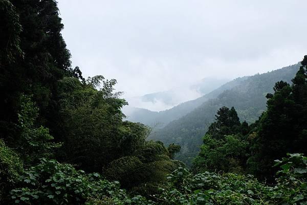 森鐵健行風景