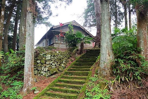 通往多林村的綠色石階