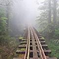 「印第安納瓊斯」之山林鐵道版
