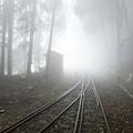 濃霧中的第一分道