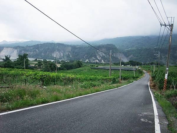 稻葉產業道路一景