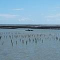 駕筏巡弋的東石蚵農