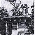 用檜木建造的木履寮車站老照片
