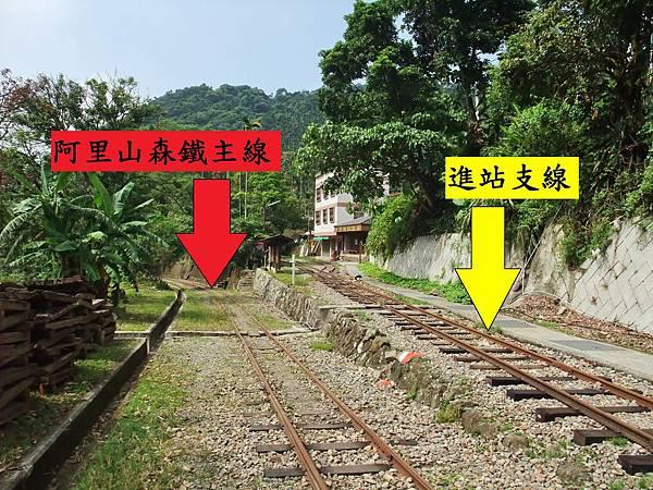 阿里山森鐵主線與進站支線示意圖2