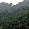 獨立山上隱約可見阿里山鐵路