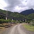 南迴鐵道與芒果園