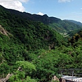 從登山步道鳥瞰山谷