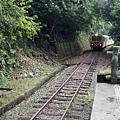 阿里山小火車登山